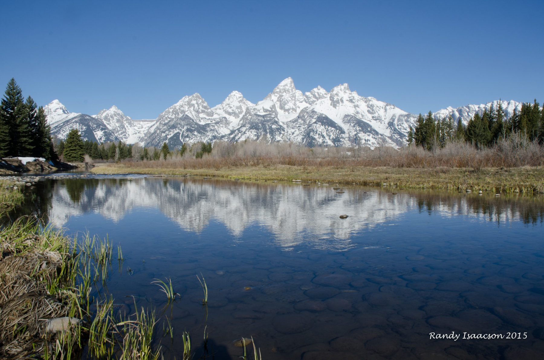 Schwabacher's Landing on April 18, 2015.  This photo was taken at about 8:30 am on the south end of the Landing.