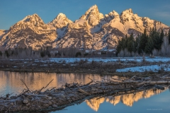 Early Spring at South Schwabacher's
