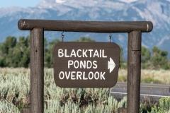 Blacktail Pond Sign