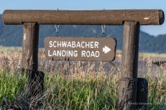 Schwabacher's Sign